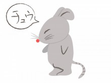 宇和島市 一般のお客様  ネズミ駆除・防除施工事例