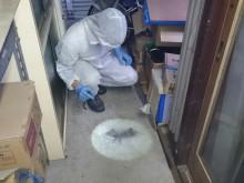 宇和島市 事業所倉庫 ネコノミ・ネズミノミ一斉駆除施工事例
