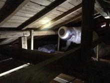 宇和島市 借家 一般のお客様 天井裏 スズメバチ・蜂駆除&封鎖工事施工事例