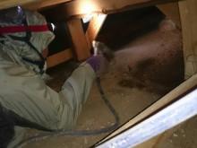 宇和島市 一般のお客様 リフォーム改装中 床下清掃・シロアリ予防処理施工事例